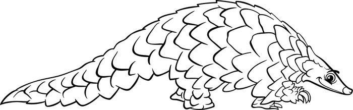 Cuadro en Lienzo Pangolines animales para colorear de dibujos