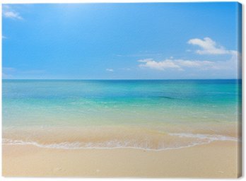 Cuadro en Lienzo Playa y mar tropical
