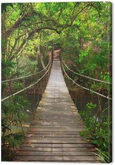 Cuadro en Lienzo Puente a la selva, Khao Yai National Park, Tailandia