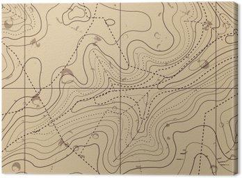 Cuadro en Lienzo Resumen mapa Retro Topografía del fondo