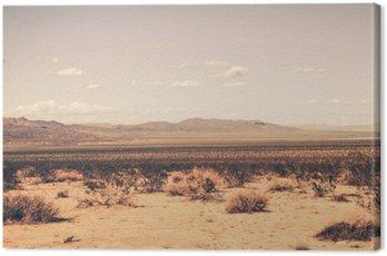 Cuadro en Lienzo Sur Desierto de California