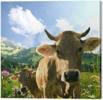 Cuadros en lienzo vacas pixers vivimos para cambiar - Cuadros de vacas ...
