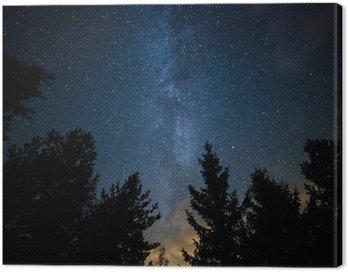 Cuadro en Lienzo Vía Láctea sobre el Bosque