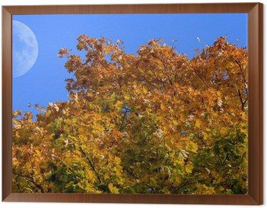 Cuadro Enmarcado Der Mond am Blauen Herbsthimmel