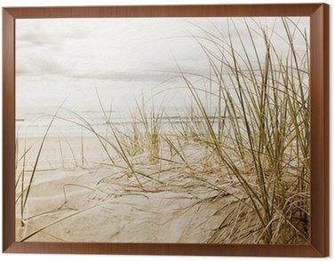 Cuadro Enmarcado Primer plano de una hierba alta en una playa durante la temporada nublado