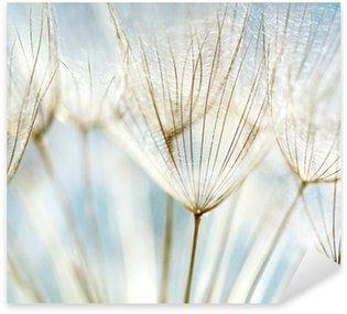 Pixerstick till Allt Abstrakt maskros blomma bakgrund
