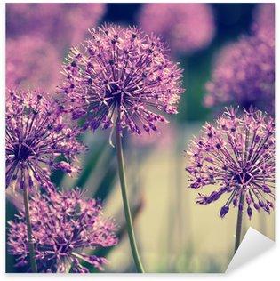 Pixerstick till Allt Allium blommor retro look