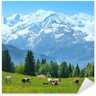 Pixerstick till Allt Herd kor på glänta och Mont Blanc bergsmassiv vy