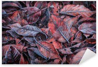 Pixerstick Dekor Höstlöv täckt med frost - bakgrund