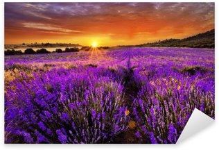 Pixerstick Dekor Lavendel