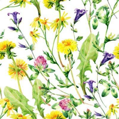 Pixerstick till Allt Meadow vattenfärg vilda blommor seamless