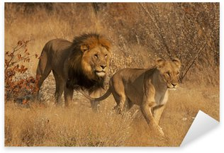 Pixerstick till Allt Par i Lions