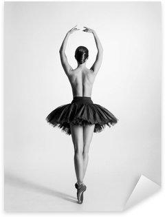 Pixerstick till Allt Svart och vitt spår av en topless balettdansös