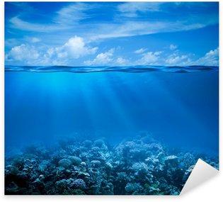 Pixerstick till Allt Underwater korallrev havsbottnen vy med horisonten och vattenytan