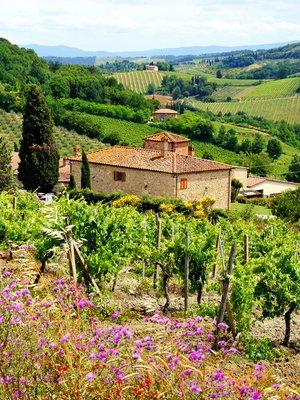 Pixerstick till Allt Visa genom vingårdar med stenhus, Toscana, Italien