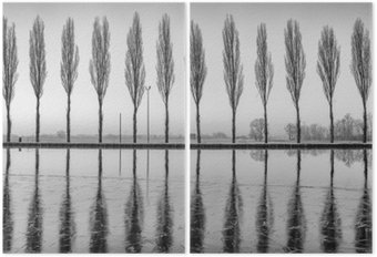 Díptico Alberi riflessi sul lago all'alba en bianco e nero