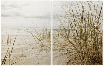 Díptico Close up of a tall grass on a beach during cloudy season