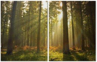 Díptico Hermoso bosque