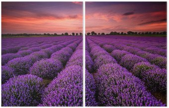 Díptico Stunning landscape with lavender field at sunset