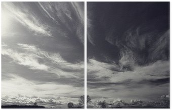 black and white photo autumn landscape Diptych