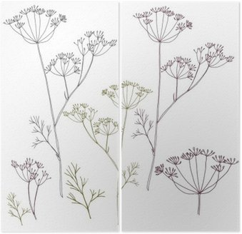 Dill or fennel flowers and leaves.