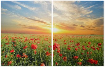 Diptych field with poppies