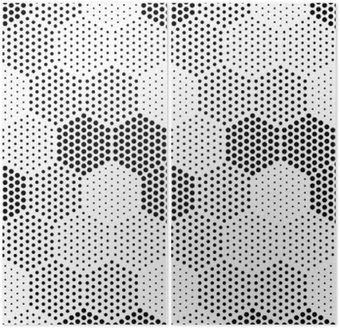 Diptych Hexagon Illusion Pattern