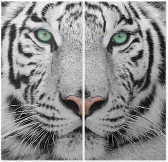 white tiger Diptych