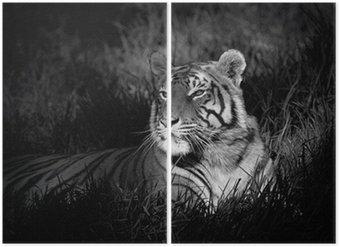 Diptychon Monochrome Bild eines Bengal-Tiger