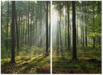 Diptychon Morgen im Wald