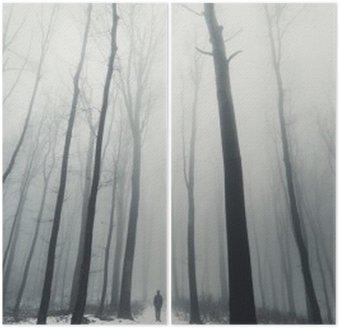 Diptych Muž v lese se vzrostlými stromy v zimě