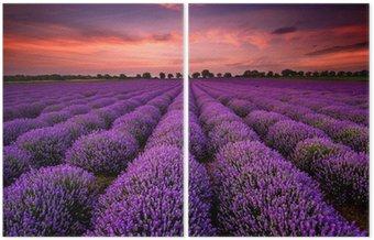 Diptyk Bedövning landskap med lavendel fält vid solnedgången