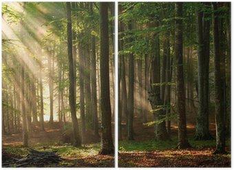 Diptyque Rayons de soleil dans la forêt