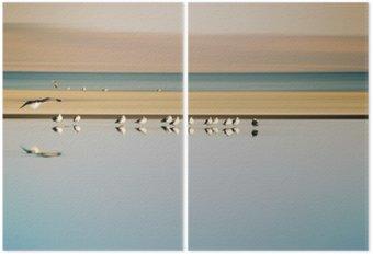 Diptyque Vogelschwarm dans Reihe / Ein kleiner Vogelschwarm dans Möwen einer Reihe Brutkolonie de Saltonsee am in Kalifornien.