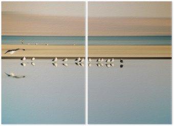 Dittico Vogelschwarm in Reihe / Ein kleiner Vogelschwarm in Reihe Stehender Möwen einer Brutkolonie sono Saltonsee in Kalifornien.