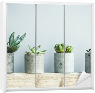 Dolap Çıkartması Diy beton tencerede succulents. İskandinav oda iç dekor