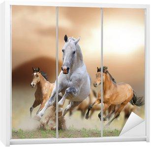Dolap Çıkartması Gün batımı atlar