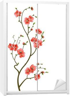 Dolap Çıkartması Kiraz çiçeği şube arka plan