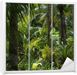 Dolap Çıkartması Lush Tropik orman Rainforest Arkaplan