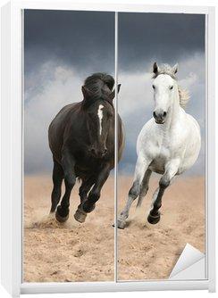Dolap Çıkartması Vahşi çalışan siyah ve beyaz atlar