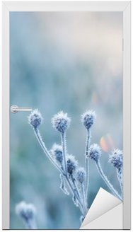 abstract natural background from frozen plant covered with hoarfrost or rime Door Sticker