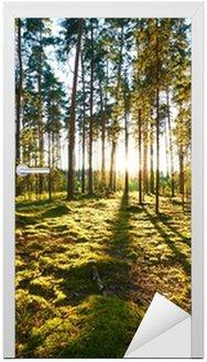 Sunrise in the pine forest Door Sticker