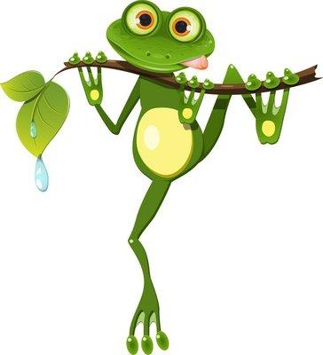 Duvar Çıkartması Bir şube frog