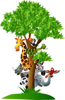 Duvar Çıkartması Çeşitli komik karikatür safari hayvanlar bir ağacın arkasına saklanacak