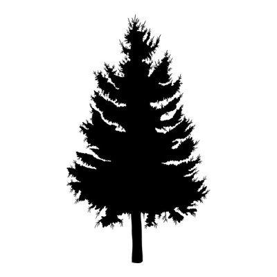 Duvar Çıkartması El çam ağacı vektör illüstrasyon çizilmiş. karaçam ağacının siluet.