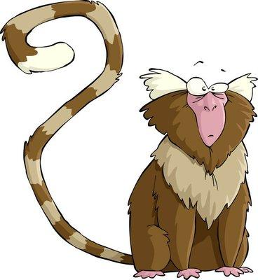 Duvar Çıkartması Ipek maymun
