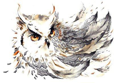 Duvar Çıkartması Kuş