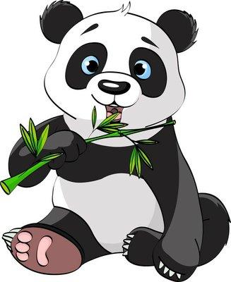 Duvar Çıkartması Panda yeme bambu