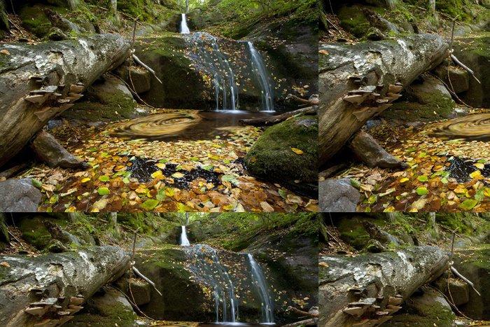 Vinil Duvar Kağıdı Küçük bir şelale sonbahar yaprakları kaplı. Uzun pozlama çekim - Mevsimler