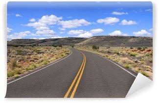 Vinil Duvar Resmi Arizona çöl uzun yol